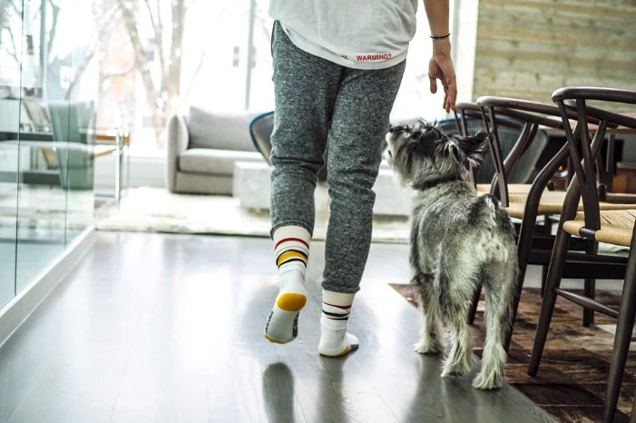 Woman at home in comfy clothes walking with dog